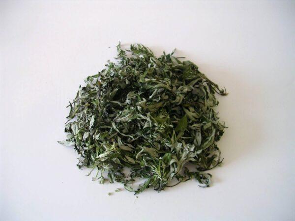 Tisane en vrac de feuilles d'armoise séchée