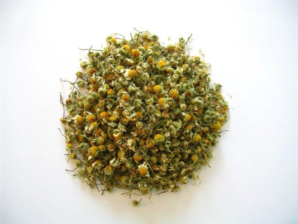 Tisane en vrac de fleurs de camomille