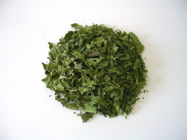 Tisane en vrac de feuilles d'ortie séchée